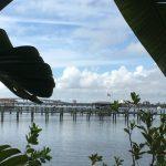 Acqua Development Condo. View of the River