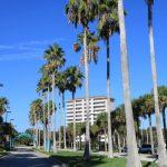 Landmark Condominium